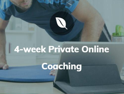 4 week private